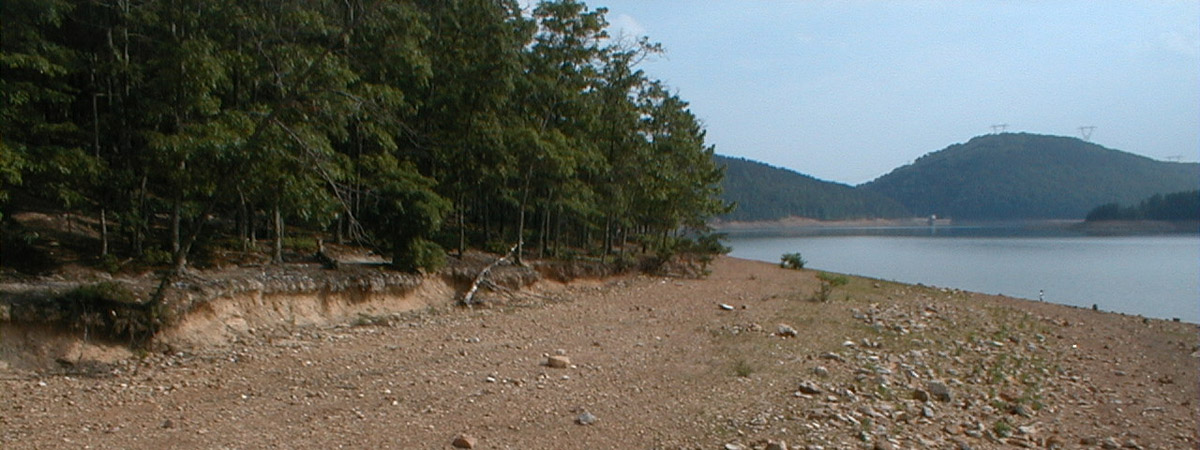 carvins cove drought conditions